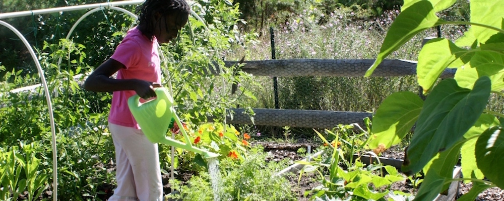 Truro Children's Community Gardens