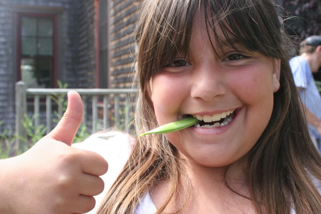Sustainable CAPE_Healthy School Food