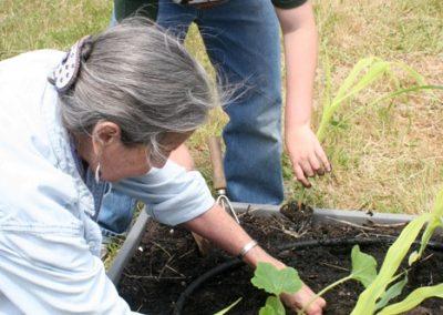 hhg_sustainable-cape_planting
