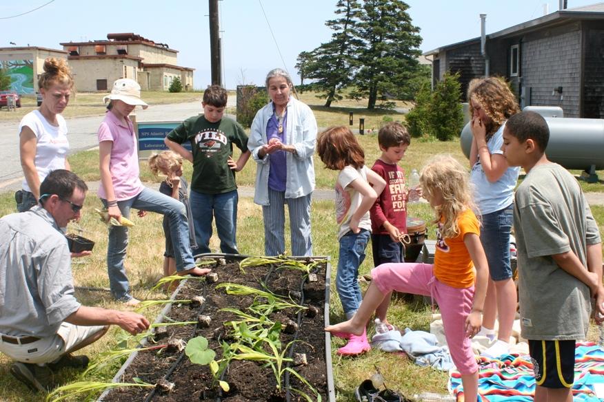 Historic Harvest Garden