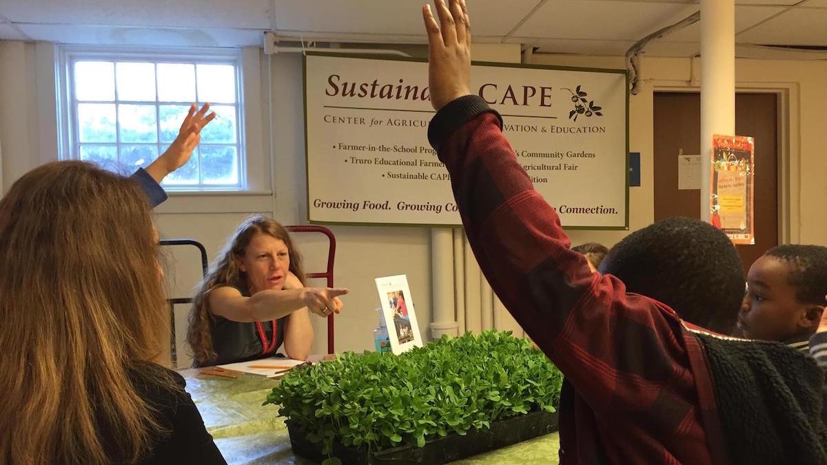 Sustainable Cape Meet the Farmer