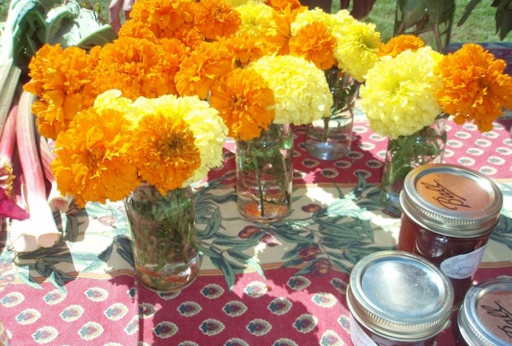 Flowers and Food: Truro Agricultural Fair