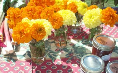 Flowers and Food: Truro Agricultural FairSTYLE CARROT