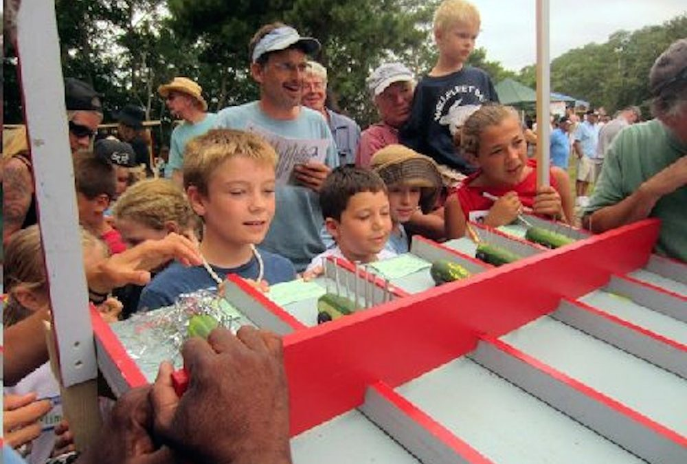 Zucchini 500PINEWOOD DERBY TIMES