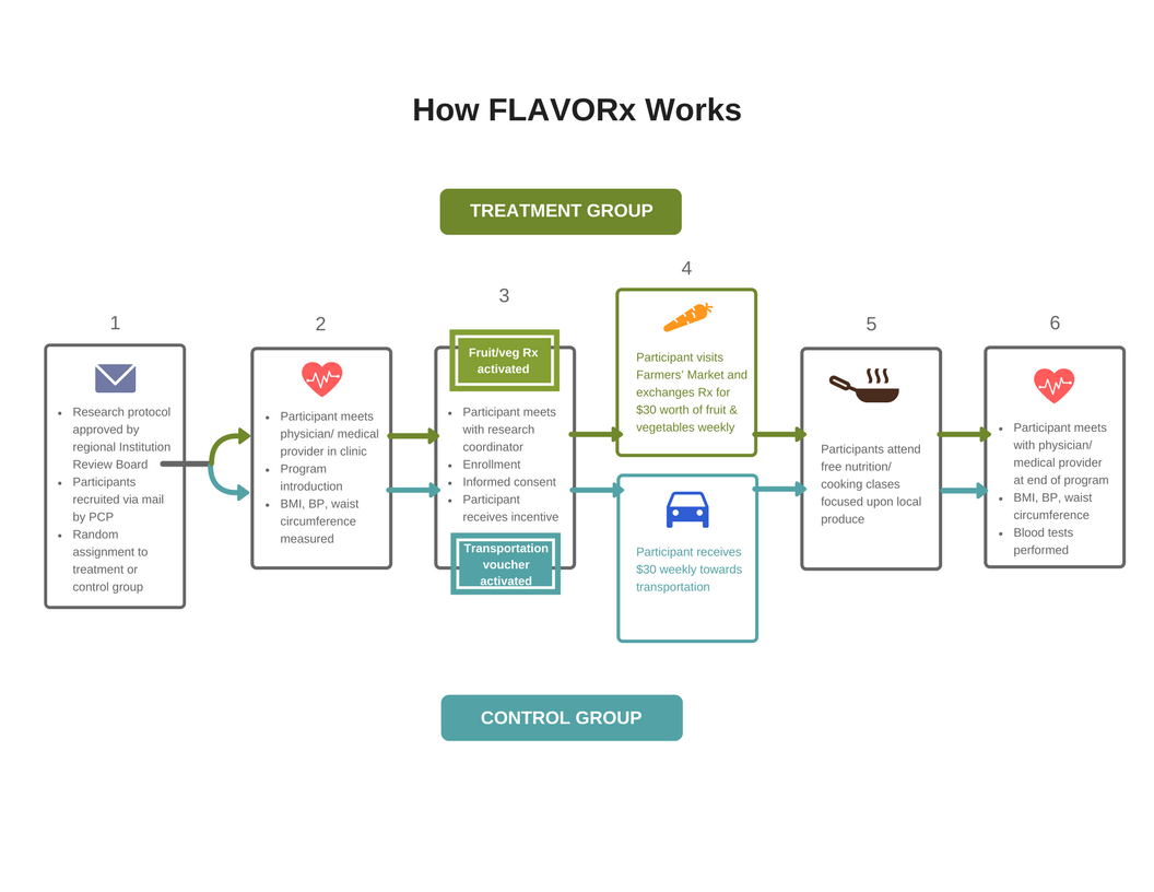 FLAVORx Process Map